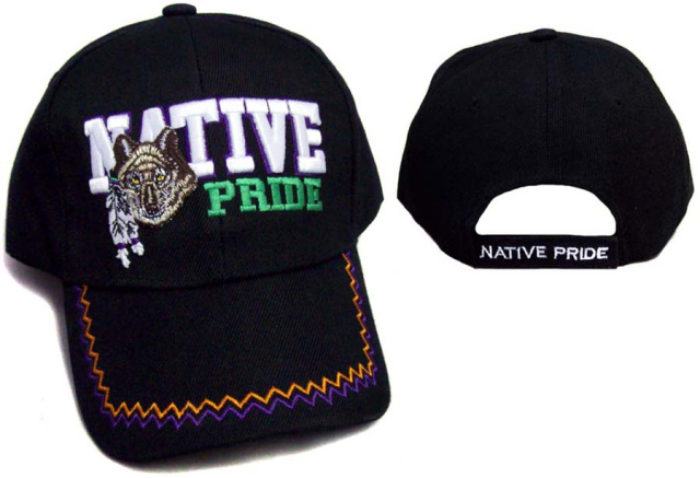 03a4dc877 Native Pride - Wolf with Feathers